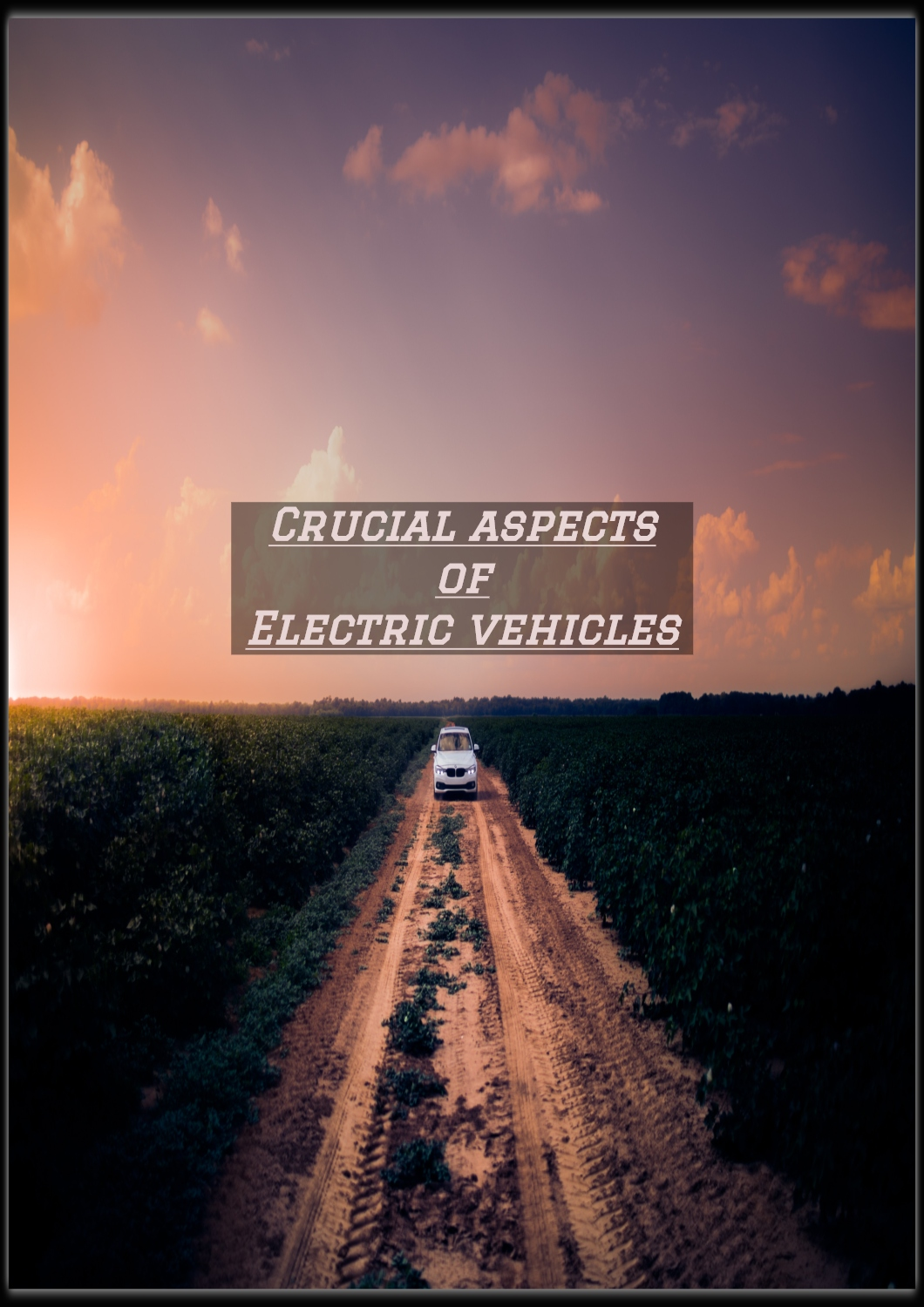 Crucial Aspects of Electric Vehicles