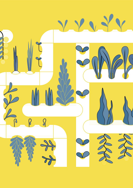 Hydroponik i konventionell landbrug