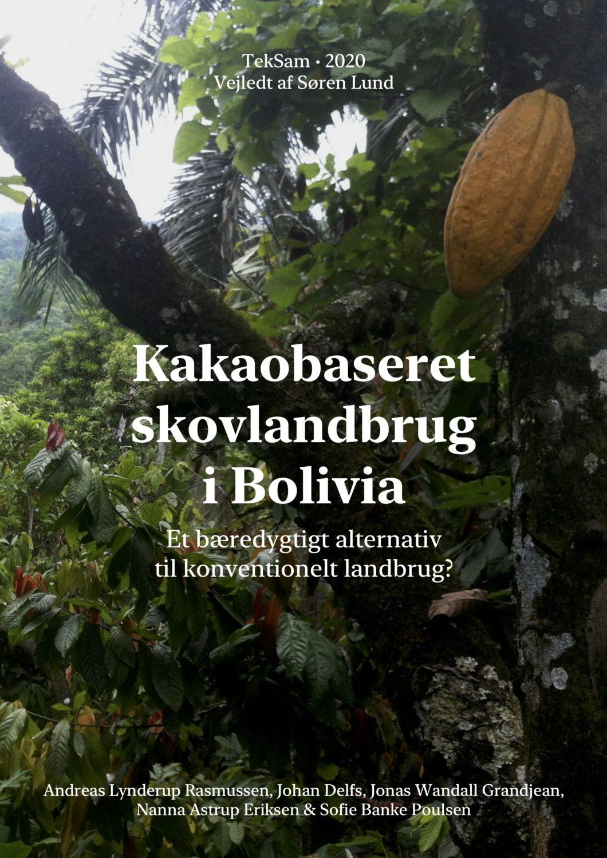 Kakaobaseret skovlandbrug i Bolivia