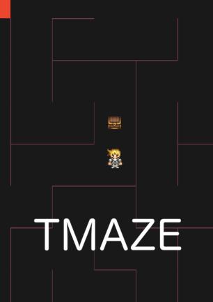 TMaze