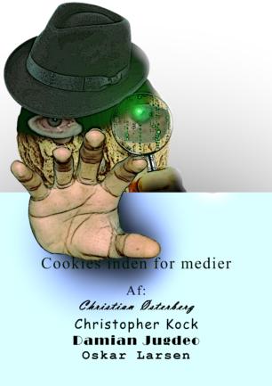 Cookies i medier
