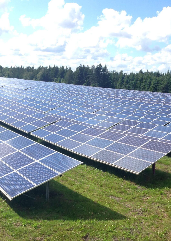 Solceller på lavbundsjord