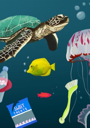Bekæmpelse af forurening i havene